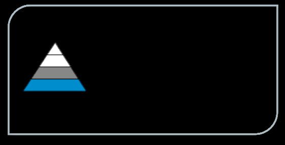 delmation_logo